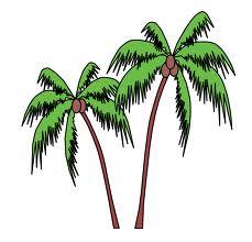 two-palms-2.jpg